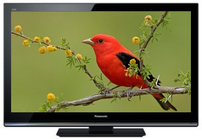 Buy Panasonic VIERA 32 Inches HD LED TH-L32X30D Television: Television